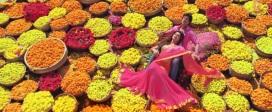 Colourful india! Photo-Chennai Express movie