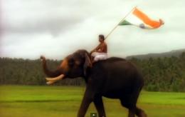 ~ Vande Mataram: Happy Independence Day India
